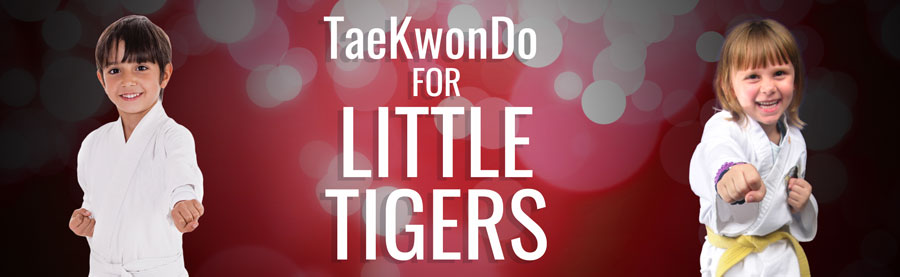 LITTLE-TIGERS-BANNER